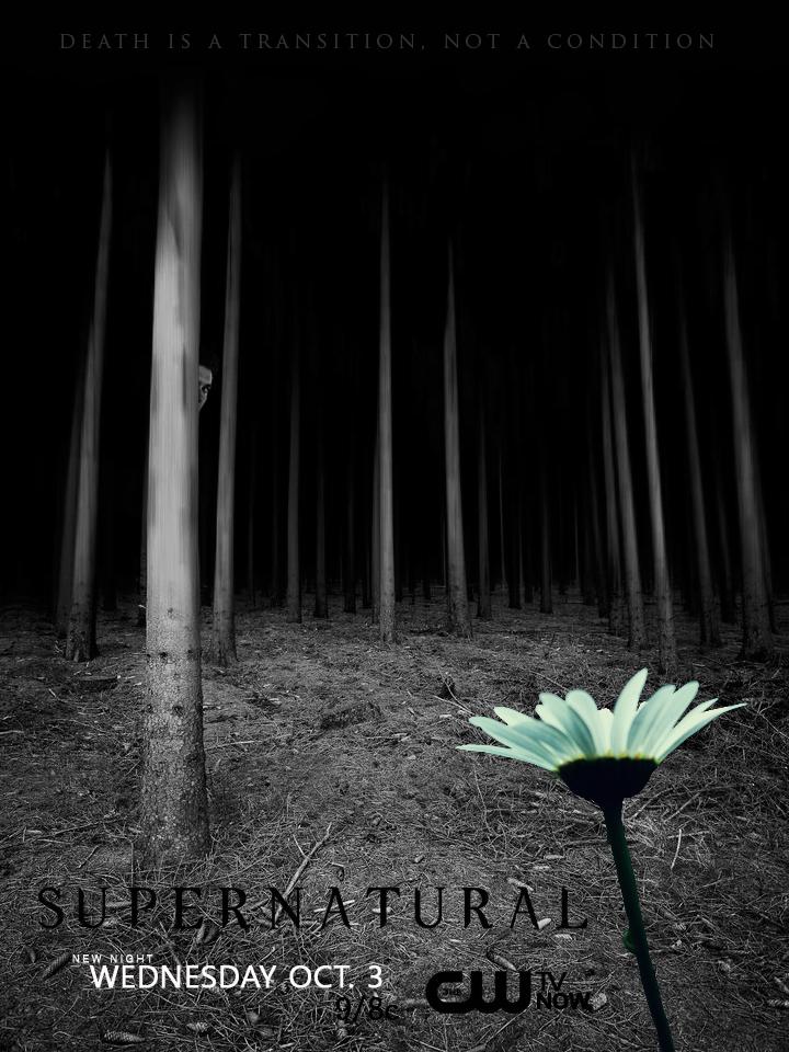 Supernatural Season 8 - 這是我最喜歡的海報,有 Dean 在那邊探頭呦!